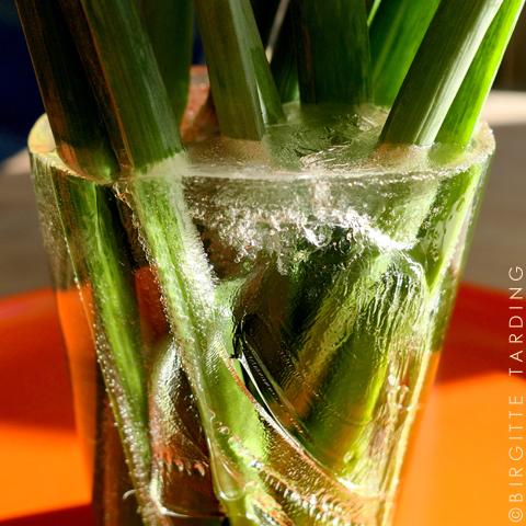 cold vase